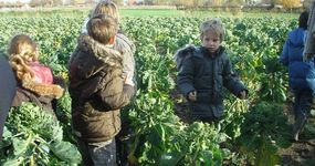 Bioboerderij De Zaaier - Ruddervoorde - Bakhuis